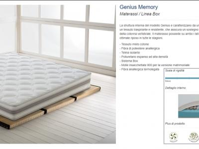 28 - Genius Memory